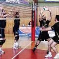 Volley, l'Agristella Barletta perde con onore