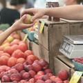 Mercato del sabato a Barletta, i dubbi dei cittadini sulla riapertura