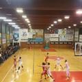 La Rosito Barletta sbanca Molfetta: 83-88 il finale
