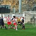 Calcio, il Barletta attende la capolista Catanzaro