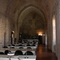 Biblioteca comunale di Barletta, da venerdì si accede solo con Green Pass
