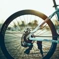 In 5 anni 66 vittime e circa 2500 incidenti in bici in Puglia