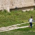 Un intruso nel fossato del castello