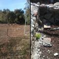 SOS Canne della Battaglia, ladri alle Terme di San Mercurio