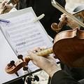 Canne della Battaglia, una leggiadra melodia di archi