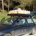 Sequestrati 130 kg di frutta avariata, coinvolti due barlettani