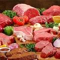 «Assurdo vietare la macellazione di carne di cavallo»