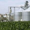 """Sindaco e politici silenti sulla centrale a biomasse, c'è patto di  """"non belligeranza """""""