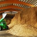 Centrale a biomasse: comune sospende iter procedurale