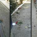 Cimitero di Barletta, «sembra una discarica»