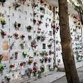 Non c'é pace fra i loculi del Cimitero di Barletta