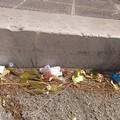 Il mare di Barletta: contaminato anche dai coriandoli di plastica