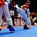 Kickboxing, 4 atleti barlettani ai mondiali
