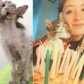 La storia di rinascita della gattina Lolli, una vittoria targata Enpa