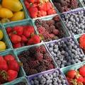 Apertura mercato settimanale a Barletta, ecco alcune proposte