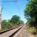 «Per poco non sono stato investito dal treno», le precisazioni di Rete Ferroviaria Italiana
