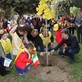 Festa dell'Albero, Cannito: «Il nostro obiettivo è rendere Barletta più pulita e respirabile»
