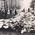 Anmig e Ancr commemorano le vittime dell'Olocausto e delle Foibe