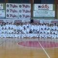 Taekwondo, al PalaMarchiselli esami per 200 atleti