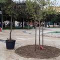 """Giardini """"De Nittis"""", nuova linfa al verde cittadino"""