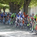 È ufficiale, il Giro d'Italia 2020 passerà da Barletta