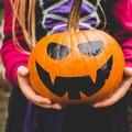 """Una biblioteca...da brivido"": letture animate per Halloween"