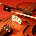Musica nel silenzio, un trionfo di note a Canne della Battaglia