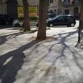 Dopo corso Vittorio Emanuele, via le panchine anche presso l'orologio di San Giacomo