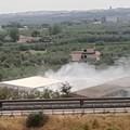 Incendio in contrada Crocifisso a Barletta, intervengono i vigili del fuoco