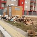 Rifiuti abbandonati in via Velasquez, la denuncia di Carlo Leone