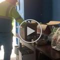 Covid-19, più di 200 famiglie al banco alimentare: «Barletta ha un cuore grande»