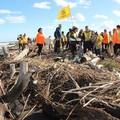 Spiagge e fondali puliti anche a Barletta, le iniziative di oggi e domani