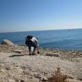 Molo di Levante e fondali marini ripuliti a Barletta da Legambiente