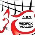 Pallavolo, nasce la Asd Red Fox Volley Barletta