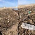 Un mare di plastica sulla spiaggia di Barletta