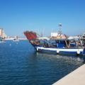 Finanziamento per il porto di Barletta, la nota del senatore Damiani