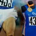 Pietro Mennea Half Marathon 2018, ecco la maglia ufficiale