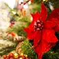"""Concorso artistico """"Magico Natale"""": a Barletta la premiazione dei piccoli artisti"""