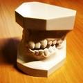 A Bari chiude la facoltà di odontoiatria