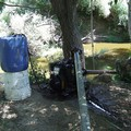 Grido d'allarme per il fiume Ofanto, «grave degrado ambientale»