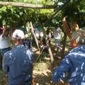 Operai agricoli e florovivaisti in sciopero, protesta sotto la prefettura a Barletta