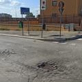 Un lettore denuncia: «A Barletta manto stradale completamente disastrato»