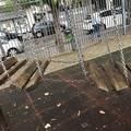 Parco giochi di via Chieffi: «Degrado e abbandono»