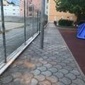 Parco giochi di via Chieffi, movimento AMICO: «Importante completare l'area»