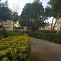 Parco in via Dante Alighieri, Cianci: «Restituiremo questo verde ai cittadini di Barletta»