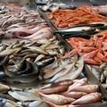 """Sequestrate in Puglia 9 tonnellate di prodotti ittici  """"non made in Italy """""""