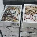 Dalla pesca di frodo ai piatti della mensa Caritas di Barletta