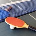 Tennistavolo, buoni risultati per l'Asi Lamusta Barletta nel torneo di Taranto