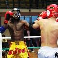"""5° Pro Kombat Fight Show, successo di pubblico e solidarietà al """"PalaBorgia"""""""