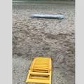 Il materasso abbandonato sulla spiaggia di Barletta: «È ancora lì dopo una settimana»
